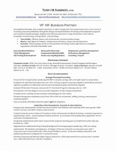 Financial Analyst Resume Template - Sample Resume for Financial Analyst Valid Financial Analyst Resume