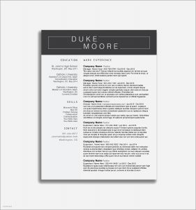 First Year Teacher Resume Template - Elementary Education Resume Sample Refrence ¢Ë†Å¡ 30 New Elementary