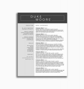 Foster Resume Template - 40 Elegant Gallery Free Professional Resume Templates