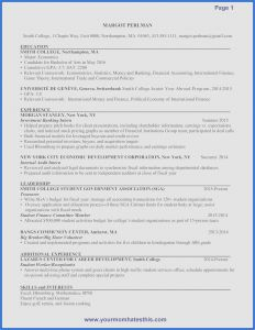 Free Internship Resume Template - 29 Audit Program Template New