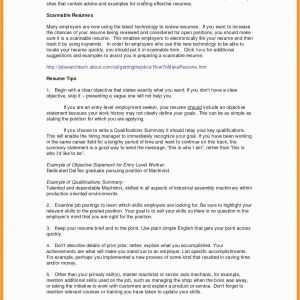 Functional Resume Template Pdf - Functional Resume Sample Pdf Pretty Bination Resume Examples New