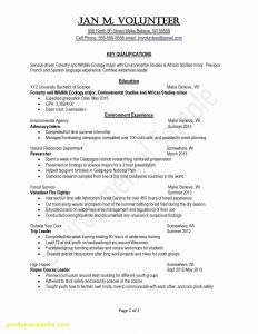 General Contractor Resume Template - Summary for Resume Samples Resume Sample Summary Fresh Examples