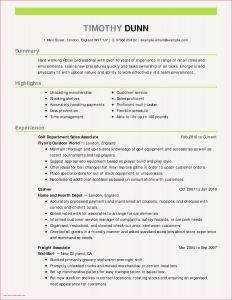 Group Resume Template for A Hotel - Sample Resume Hotel and Restaurant Services Financial Services