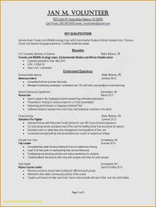 Helpdesk Resume Template - 30 Help Desk Resumes Examples