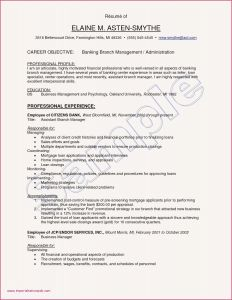 Hospitality Resume Template - Resume Sample Hotel and Restaurant Management Elegant Grapher