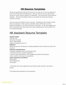 Hr Manager Resume Template - 30 Best Hr Manager Resume Sample