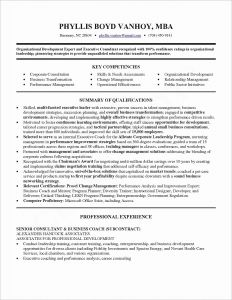 Hr Resume Template - Hr Consultant Resume Sample New Lovely Resume Pdf New Resume