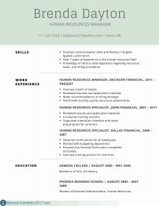 Human Resource Manager Resume Template - Human Resource Resume Example Paragraphrewriter