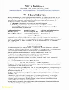 Human Resource Manager Resume Template - Sample Human Resources Manager Resume New Human Resource Manager