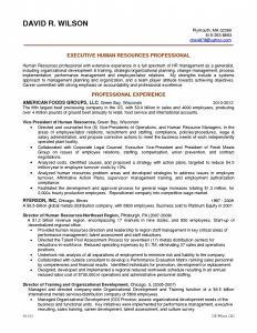 Human Resources Manager Resume Template - Journalism Resume Examples Unique Hr Director Resume Examples