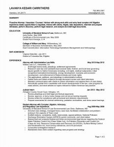 Information Technology Resume Template - Information Technology Resume Examples Luxury Professional Skills