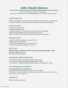 Information Technology Resume Template Word - Awesome Indesign Resume Template