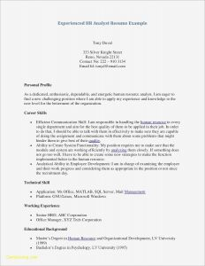 Inroads Resume Template - Sample Resume Writing format Reference 26 Simple Sample Resume