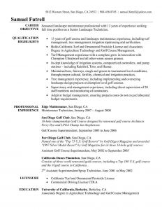 Inroads Resume Template - It Resume Examples 2016 Luxury Resume Summary Statement Examples