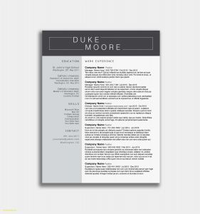 It Director Resume Template Word - It Professional Resume Templates In Word Fresh Resume Templates Word