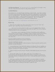 It Project Manager Resume Template - Sample Project Manager Resume Inspirationa Technical Project Manager