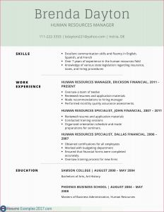 Kelley Resume Template - Resume Samples for Experienced Net Professionals Www Resume