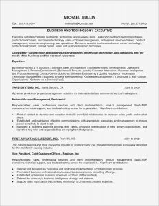 Kelley School Of Business Resume Template - Mba Resume Sample Inspirational Summary Example for Resume Pdf