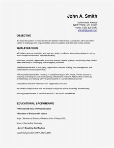 Labor Resume Template - Labor Resume Templates Paragraphrewriter