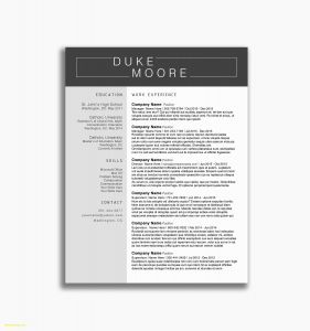 Law Enforcement Resume Template - Law Enforcement Resume Examples Best 44 Awesome Law Enforcement
