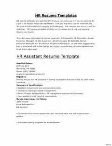 Manager Resume Template Word - Download Luxury Word 2013 Resume Templates