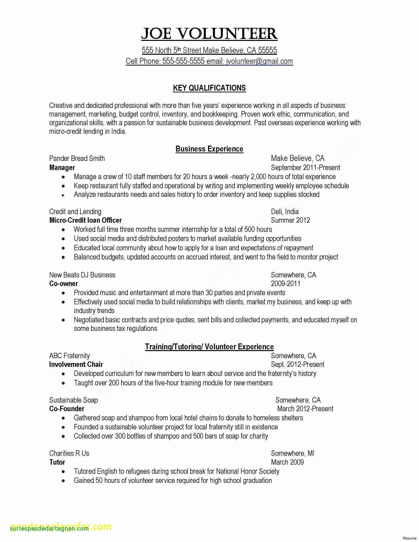 11 Marissa Mayer Resume Template Examples Resume Ideas