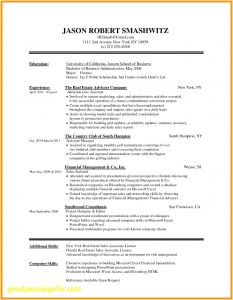 Marissa Mayer Resume Template Word - 46 Fresh Free Resume Templates for Mac