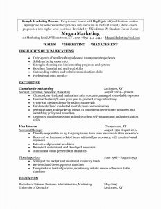 Marketing Director Resume Template - Example Resume Summary Fresh Inspirational Grapher Resume Sample
