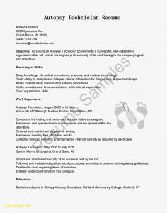 Medical Resume Template Microsoft Word - Letter Resignation Template Word 2007 Downloadable Word Resume