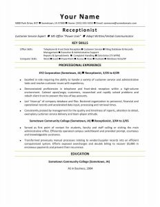 Military Resume Template Microsoft Word - 38 Design Military Resume Examples