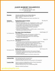 Mini Resume Template - Mini Resume Template Best where Can I Get A Free Resume Template