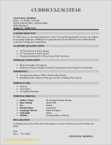 Mit Resume Template - Lebenslauf Mit Foto Cv Resume Example Doc Valid Resume Template Doc