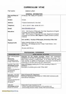 Modeling Resume Template - Promotional Model Resume Template Fwtrack Fwtrack