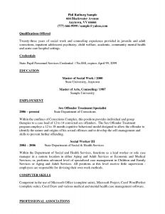 Msw Resume Template - 55 Puter Skills Resume