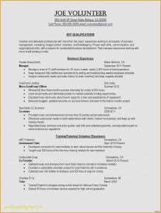Music Business Resume Template - 29 New Resume Easy format