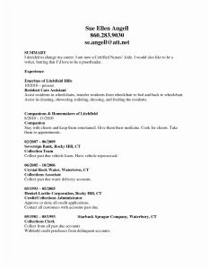 Nursing Resume Template Word - Nursing Resume Template Word Best Nursing Resume Templates Word