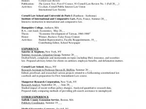 Nyu Resume Template - Nyu Law Resume format Talktomartyb