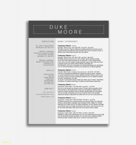 Open Office Template Resume - Resume Templates for Openoffice Beautiful New Resume Templates Open