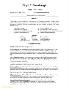 Overleaf Resume Template - Sample Executive assistant Resume Awesome Admin Resume Template