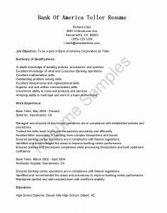 Paramedic Resume Template - Resume for Graphic Designer New Paramedic Job Description for Resume