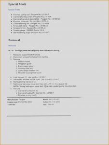Paramedic Resume Template - Cfa Resume Sample Image Collections Free Resume Templates Word