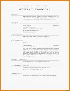Pastor Resume Template Free - Examples Resume Objectives New Resume Examples Basic Nice Pastor