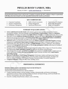 Performance Resume Template - Business Resume Refrence Career Change Resume Template Unique