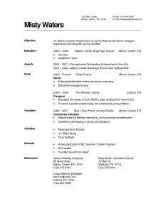 Pet Resume Template - 53 Design High School Resume Examples