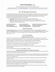 Pet Resume Template Word - Resume Word Doc Template Refrence Best Cv Template Word