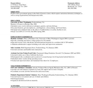 Pet Resume Template Word - Reverse Chronological Resume Template Word Unique Reverse
