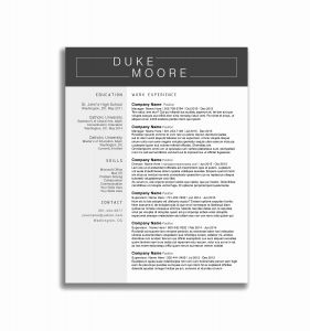 Phd Resume Template Doc - Phd Resume format Unique Resume Template Programmer