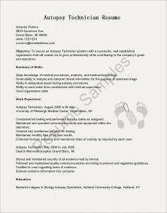 Photographer Resume Template - Grapher Resume Examples Valid Unique Pr Resume Template Elegant
