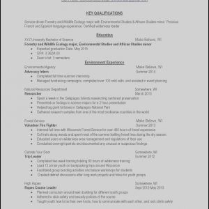 Photography Resume Template Free - Free Resumes Line Beautiful Make Resume Line Free Awesome Examples