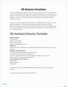 Physician Resume Template - Physician Resume Examples Fresh Physician Curriculum Vitae Template